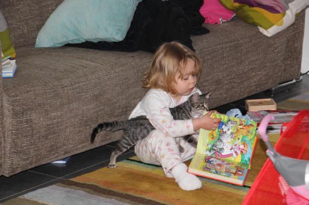 amoremiobello enfant bébé chaton-1-2