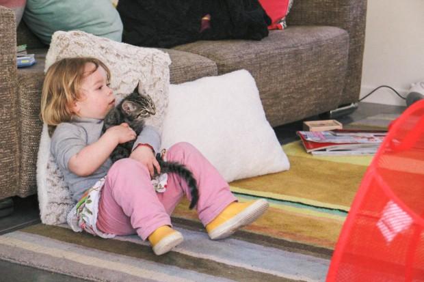 amoremiobello enfant bébé chaton-1-3