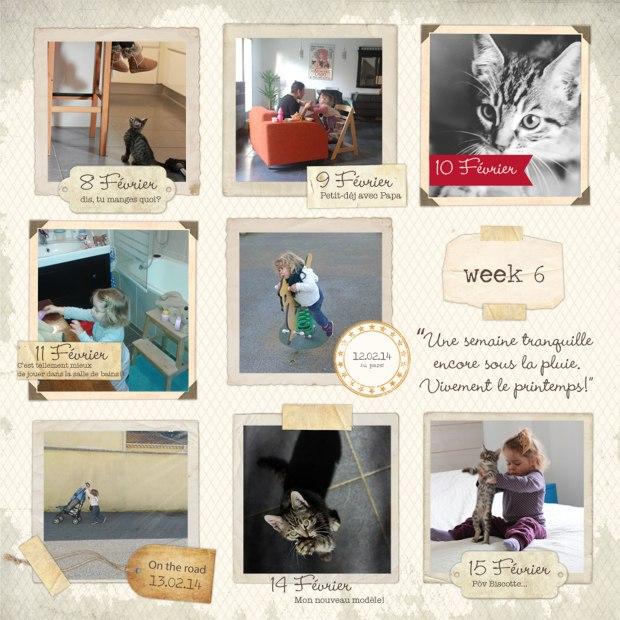 amoremiobello-week6