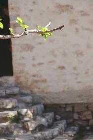 randonnée sainte victoire chapelle saint ser-5