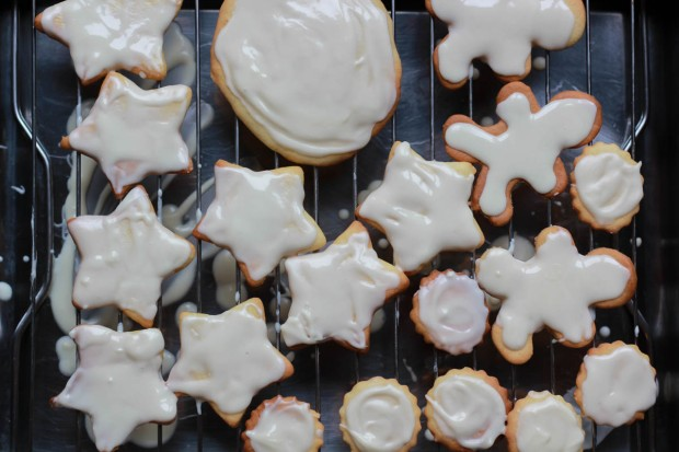 amoremiobello painting cookies-1