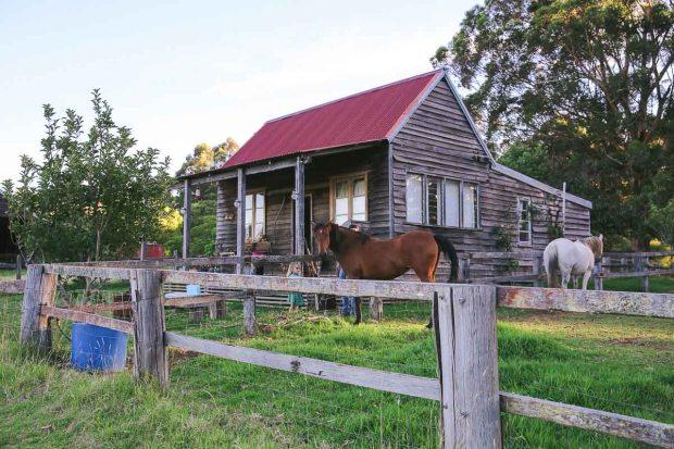 pemberton amoremiobello green cabin farmstay-22