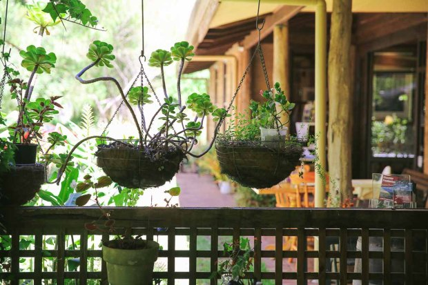 pemberton amoremiobello green cabin farmstay-3