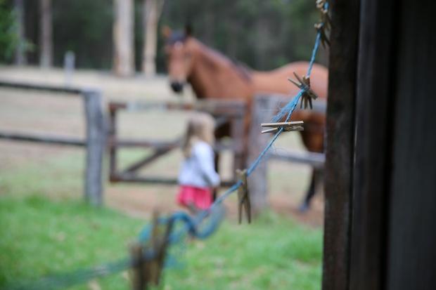 pemberton amoremiobello green cabin farmstay-33