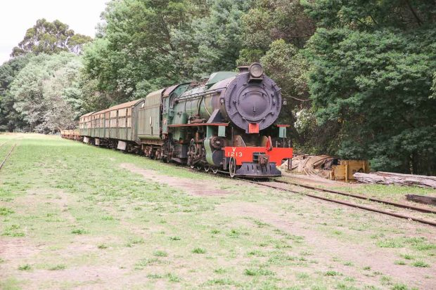 pemberton amoremiobello green cabin farmstay-43